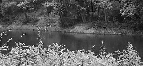 Mrtvou učitelku našel náhodný chodec u řeky Svratky poblíž Anthroposu