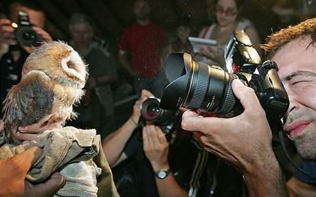 Zaměstnanci brněnské zoo kroužkovali sovy pálené