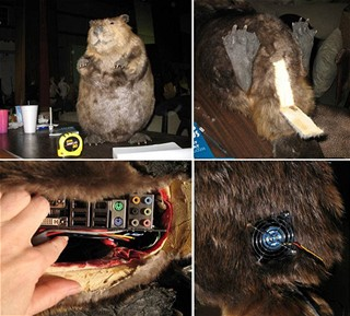 Computer beaver 2
