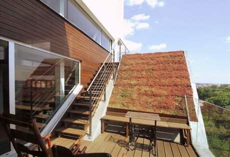 """""""Zelenou střechu"""" postačí zalít jednou za tři měsíce"""