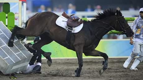 Kůň Davida Svobody, už bez jezdce