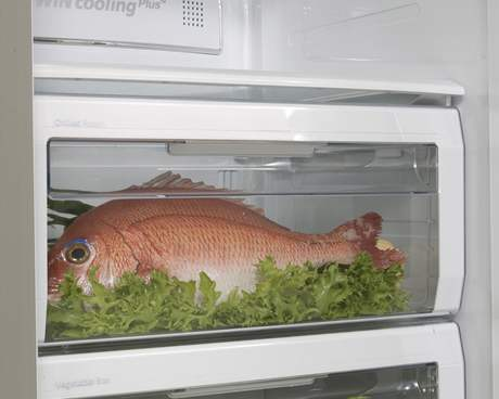 Objem ledničky dovoluje ukládat maximální množství i velikosti