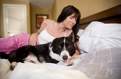 Na psí organismus působí nejhůře čokoláda na vaření nebo hořká.