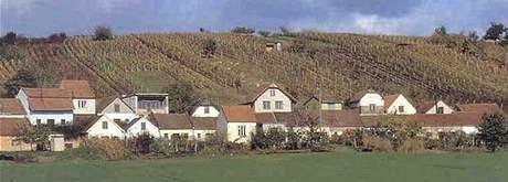 Obec Bořetice