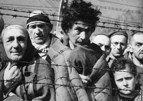Vězni v koncentračním táboře Osvětim