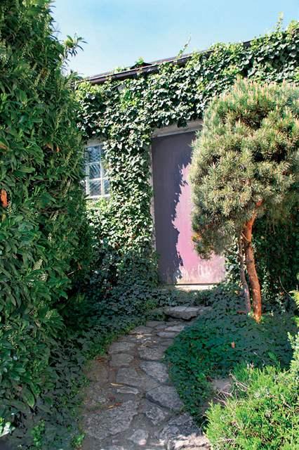 Po třiceti letech je zahrada příjemně zelená
