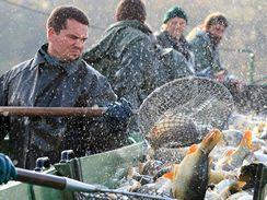 Výlov z rybníka Nesyt (4.11.2008)