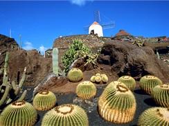 Kanárské ostrovy, Lanzarote