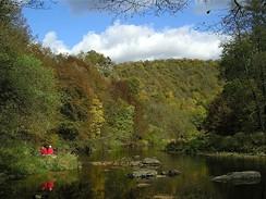 Přirozená a lidskou činností nenarušená řeka Dyje v NP Podyjí
