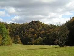 Zřícenina Nového hrádku nad údolím Dyje, pohled z rakouského břehu