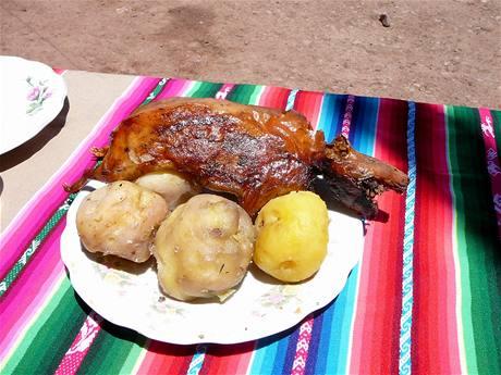 Jiný kraj, jiný mrav. V peruánských Andách je slavnostním pokrmem morče