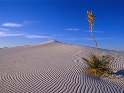 USA, New Mexico, White Sands