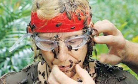 """Martina Navrátilová jako """"oběť""""  hmyzu..."""
