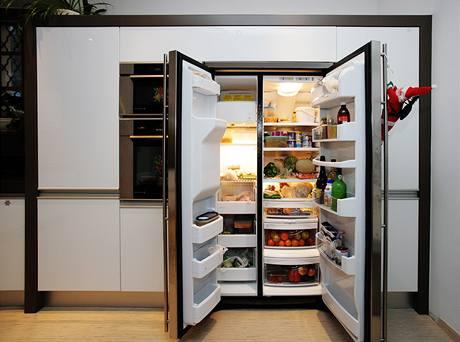 Americk� lednice byl sen obou man�el�