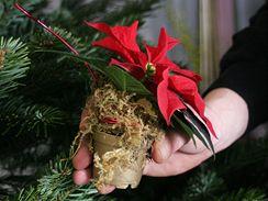 Do stromku je také možné vložit malé vánoční hvězdy