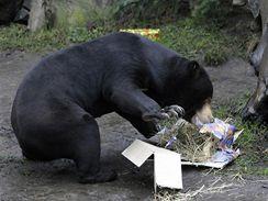Ošetřovatelé se snaží zvířata ztížením podávání potravy zabavit