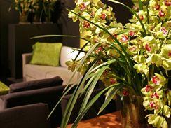 Orchideje v interiéru