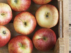 Uskladněné ovoce průběžně kontrolujte, jestli se nekazí.