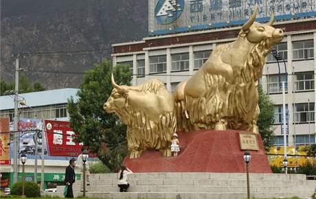 Sousoší zlatý jaků darovali Číňané Lhase ke 30. výročí