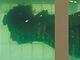 Saddám Husajn v akváriu