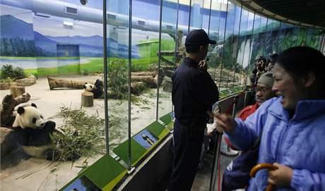 Na pandy v tchajpejské zoo se dorazily podívat davy lidí. Před výběhem pand se ale nemohly zastavovat.