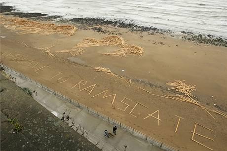 Tuny dřeva vyplavilo moře po bouři poblíž Newhavenu na jihu Británie. Prkna pocházejí z ruské nákladní lodi Sinegorsk
