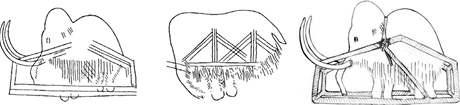 Pravěké malby mamutů a rekonstrukce jejich možné pasti