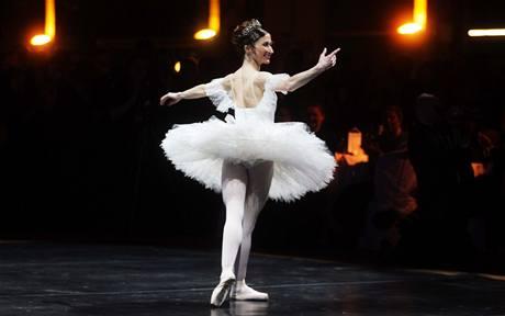 Na Českém plesu v Bruselu účinkovala i světoznámá primabalerína Anglického národního baletu Daria Klimentová.