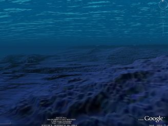 Mořské dno u Hawaie