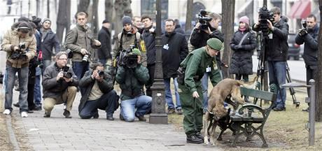 Policistka ukazuje novinářům před začátkem Mnichovské bezpečnostní konference psa, který umí hledat výbušniny.