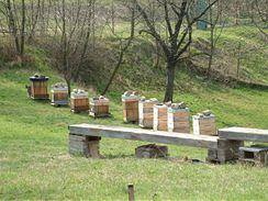 Na Toulcově dvoře produkují i vlastní med a o včelařství se tam dozvíte všechno.