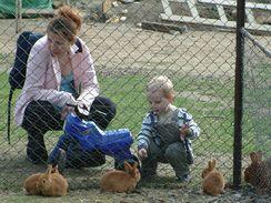 Pro děti je možnost blízkého poznání domácích zvířat naprosto jedinečným zážitkem.