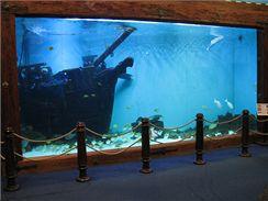 Akvárium s 50 tisíci litrů vody, vytvářející iluzi mořského dna s korábem lodi Bounty, je dokonalým domovem pro rejnoky, murény a celou řadu dalších mořských ryb (Mořský svět, Praha).