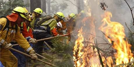Australským hasičům pomáhají Novozélanďané poblíž města Reefton, východně od Melbourne (17. únor 2009)