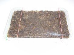 Semena se zakryj� zvlh�en�m igelitem prod�rav�n�m d�rkami