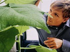 Rostliny je třeba pravidelně prohlížet, alespoň jednou týdně.