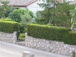 Inspirace z Chorvatska. Kamenná podezdívka doplněná živým plotem. (Krk)