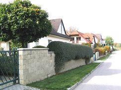I zděné ploty lze zajímavě doplnit živými. Lépe se pak opticky propojí s krajinou i mezi sebou navzájem.