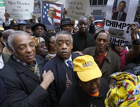 Protesty na neworském Manhattanu proti karikatuře Baracka Obamy