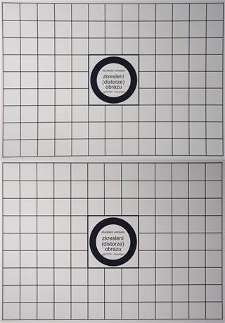 Sony W290 - distorze