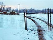 Místo chovu husy domácí firmy Rybářství Hodonín, na rybníku Písečný, kde byl objeven virus ptačí chřipky