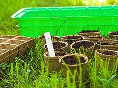 Speciální sadbovače jsou pro předpěstování rostlin ideální.