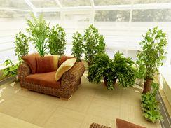 Zimní zahrada pro rostliny většinou znamená ideální podmínky. Pozor ale na ostré sluníčko na jaře či přehřívání v létě.