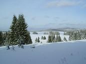Zimní krajina Slavkovského lesa