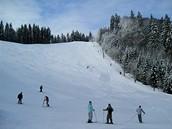 Svah zvaný Slalomák. Mariánské Lázně