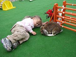 Po vydařené prezentaci jsou spokojení jak malí chovatelé, tak králíci (z akce v Pelhřimově).