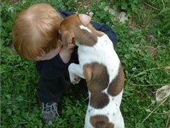 Zapomeňte, že pořídíte malému dítěti štěně Jacka na hraní.
