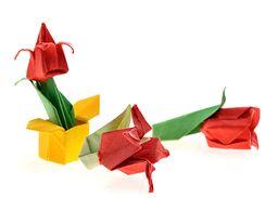 Origami tulipány