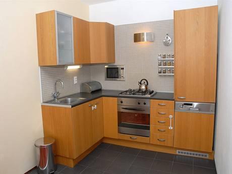 Panelákový byt 3+1