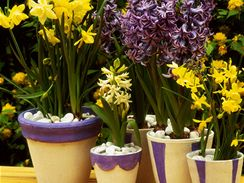 Překrytí substrátu kamínky se doporučuje proto, aby se tolik neodpařovala voda. Lze jimi také zakrýt, že v pěkném keramickém květináči je vložený praktický plastový.